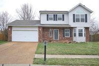Home for sale: 429 Avalon Dr., Troy, IL 62249