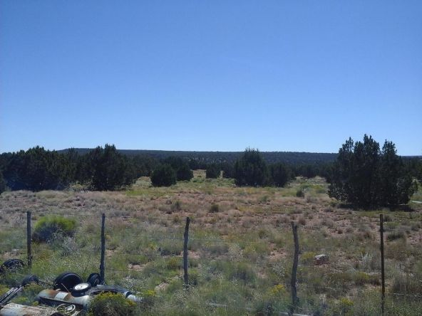 2 R Rock Rd., Ash Fork, AZ 86320 Photo 17
