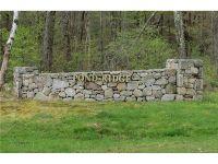 Home for sale: 38 Pond Ridge Dr., Goshen, CT 06756