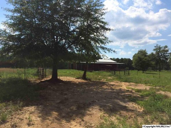 3134 Pine Mountain Rd., Remlap, AL 35133 Photo 29