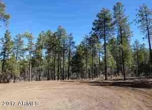 1090 W. Sadler Ln., Lakeside, AZ 85929 Photo 32
