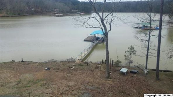 1086 County Rd. 218, Arley, AL 35540 Photo 5