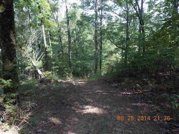 1105 Walnut Grove Rd., Hector, AR 72843 Photo 29