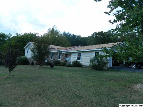 2200a Hwy. 68, Collinsville, AL 35961 Photo 2