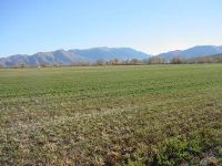 Home for sale: Lot 6 Cottontail Ln., Mackay, ID 83255