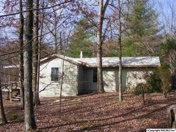 9416 County Rd. 103, Mentone, AL 35984 Photo 3