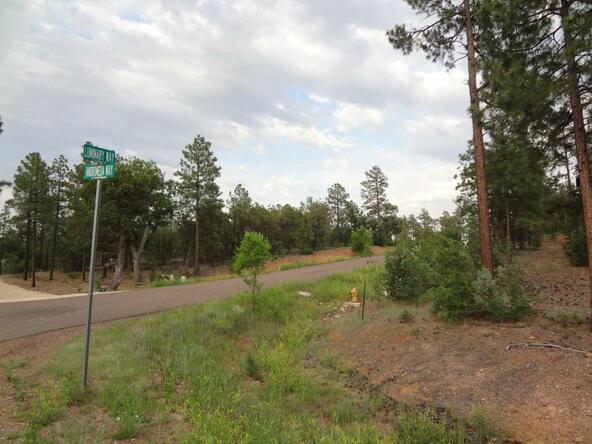 7227 Andromeda Way, Lakeside, AZ 85929 Photo 34