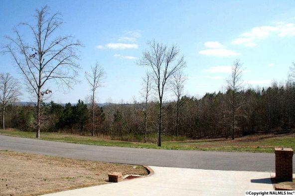 352 Tara Dr., Guntersville, AL 35976 Photo 3