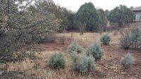 Home for sale: 25 N. Woodridge Cir., Prescott, AZ 86303