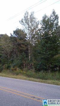 Home for sale: 7925 Miller Rd., Warrior, AL 35180