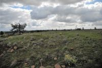 Home for sale: Xx W. Jacobs, Spokane, WA 99224