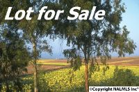 Home for sale: 1909 2nd Avenue E., Oneonta, AL 35121