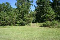 Home for sale: 266 Beaver Creek Rd., Havana, FL 32333