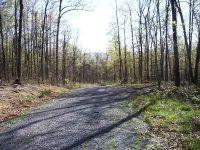 Home for sale: 0 Miracle Ridge Rd., Elkton, VA 22827