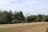 Home for sale: Tbd Hwy. 171, Hornbeck, LA 71439