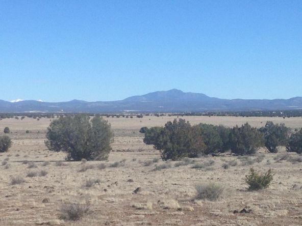 24 Off Of Antelope Run, Ash Fork, AZ 86320 Photo 3