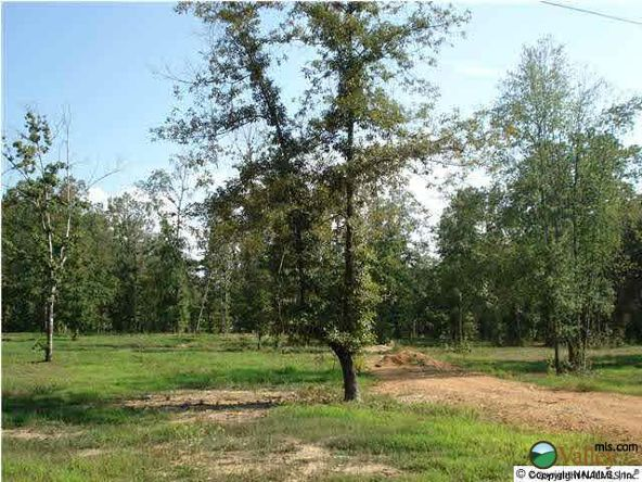 5 Armstrong Rd., Cedar Bluff, AL 35959 Photo 3