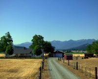 Home for sale: 3428 Scott River Rd., Fort Jones, CA 96032
