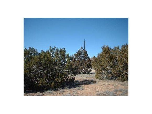 25505 E. Hillcrest Dr., Seligman, AZ 86337 Photo 1