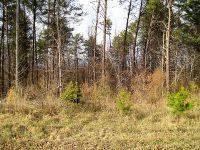 Home for sale: 1587 Ike Brooks Dr., Kings Mountain, NC 28086