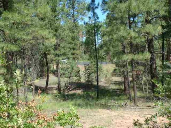 4161 W. Wild Iris Ln., Show Low, AZ 85901 Photo 2