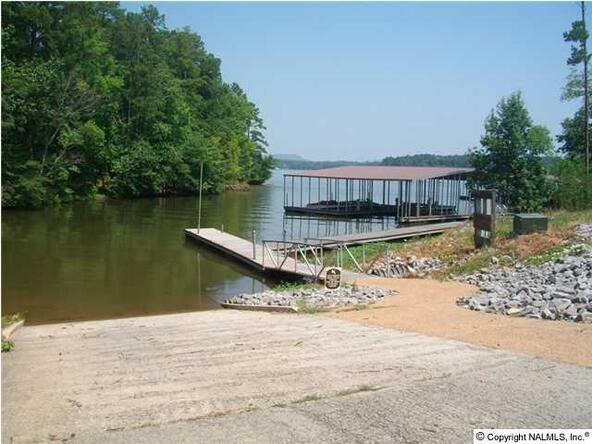160 Lookout Mountain Dr., Scottsboro, AL 35769 Photo 8