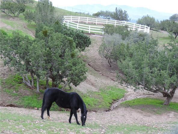 32065 Calle Vista, Agua Dulce, CA 91390 Photo 6