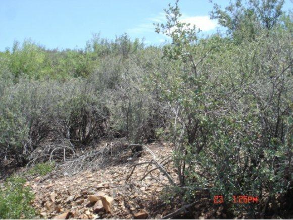 14045 E. Beverly Hills Dr., Humboldt, AZ 86329 Photo 41