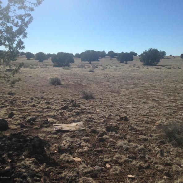 24 Off Of Antelope Run, Ash Fork, AZ 86320 Photo 8