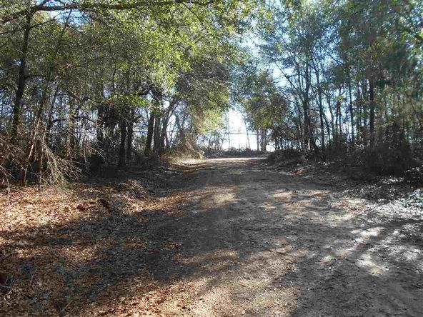 16.9 Acres Private Rd. 1363, Ariton, AL 36311 Photo 26