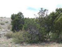 Home for sale: 2960 Buckskin Canyon Rd., Heber, AZ 85928
