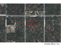 Home for sale: 2693 N.W. Holly Rd., Dunnellon, FL 34431