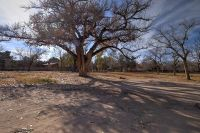 Home for sale: 8721 Rio Grande Blvd. N.W., Albuquerque, NM 87114