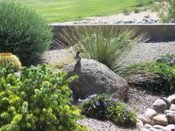 30083 N. Gecko Trail, San Tan Valley, AZ 85143 Photo 58