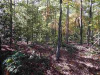 Home for sale: I Ross Mountain Rd., Mountain Rest, SC 29664