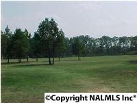 Home for sale: 469 Kinzie Ln., Rainbow City, AL 35906