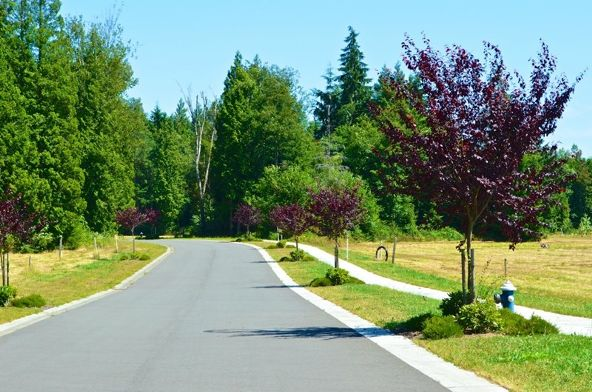 8620 Drayton View Ln., Blaine, WA 98230 Photo 20