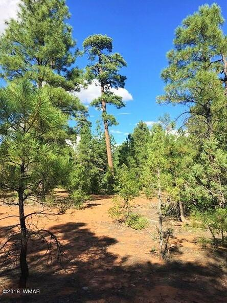 4281 W. Falling Leaf Rd., Show Low, AZ 85901 Photo 11