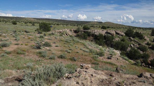 109 River Springs Ranch Unit 3 --, Saint Johns, AZ 85936 Photo 44