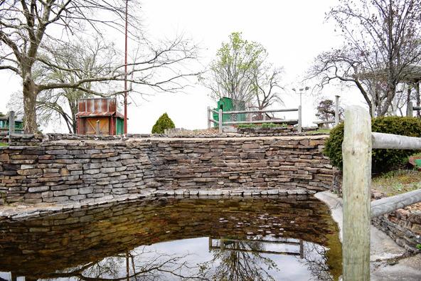 3173 E. Van Buren, Eureka Springs, AR 72632 Photo 17