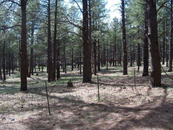 670 Old Munds Hwy. --, Flagstaff, AZ 86005 Photo 1