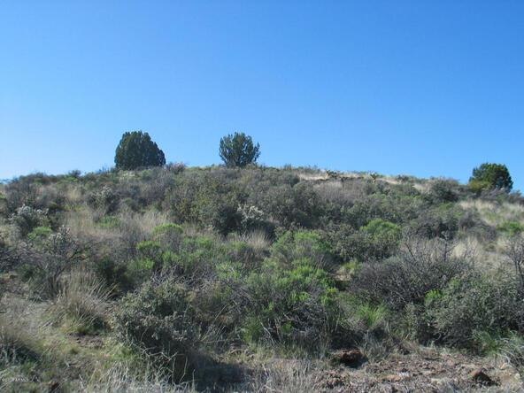 12431 S. Caballo Terrace, Mayer, AZ 86333 Photo 10