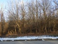 Home for sale: 1002 Echo (Lot 4) Trail, Marengo, IL 60152
