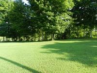 Home for sale: 10083 Celina Rd., Burkesville, KY 42717