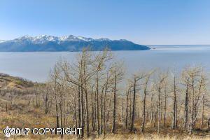 L8 Southpointe Bluff Dr., Anchorage, AK 99516 Photo 37