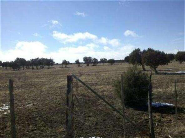 5 Or 10 Ac Turkey Lake Rd., Show Low, AZ 85901 Photo 4