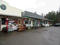 Home for sale: 18419 Hwy. 507 S.E., Tenino, WA 98589