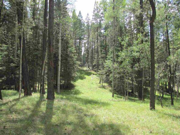 119 W. Pecos Canyon Estates Rd., Tererro, NM 87573 Photo 32