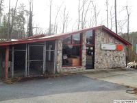 Home for sale: 9388 Hwy. 227, Guntersville, AL 35976