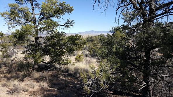 3060 N. Panamint Ln., Chino Valley, AZ 86323 Photo 16